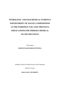 PETROLOGIC AND GEOCHEMICAL EVIDENCE FOR DIVERSITY OF MAGMA